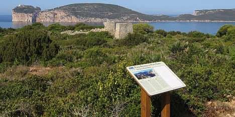 Punta Giglio, ticket per i turisti