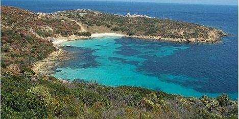 Asinara, PdS: un tavolo per aggiornare il piano Parco