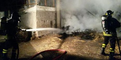 Incendio nel fienile: muoiono trenta pecore