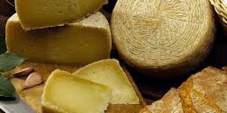 Pascoli, formaggio, latte: convegno a Sassari - Alguer.it