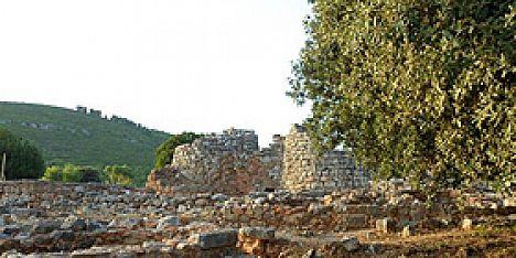 Archeologia: Alberto Moravetti a Palmavera